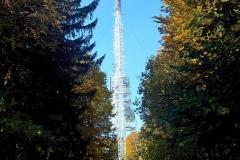 019-brezovo-polje
