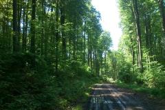 001-jankovac-velika-maliscak-biciklisticka-ruta