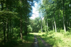 002-jankovac-velika-maliscak-biciklisticka-ruta