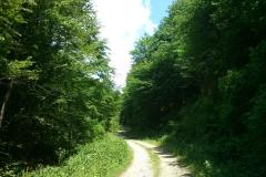 009-jankovac-velika-maliscak-biciklisticka-ruta