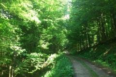010-jankovac-velika-maliscak-biciklisticka-ruta