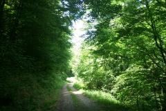 011-jankovac-velika-maliscak-biciklisticka-ruta