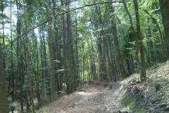 012-jankovac-velika-maliscak-biciklisticka-ruta
