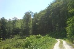 016-jankovac-velika-maliscak-biciklisticka-ruta
