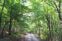 001-papuk-kapac-javor-biciklisticka-ruta