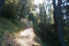 004-korcula-biciklisticke-rute
