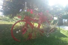011-vlasic-bicikllisticka-ruta