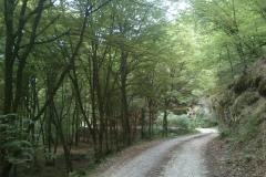 002-papuk-jarcoder-biciklisticka-ruta
