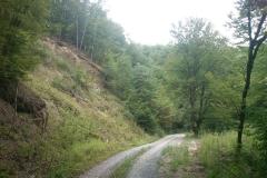 004-papuk-jarcoder-biciklisticka-ruta