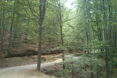008-papuk-jarcoder-biciklisticka-ruta