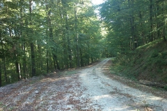 001-krndija-petrov-vrh-biciklisticka-ruta