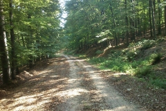 003-krndija-petrov-vrh-biciklisticka-ruta