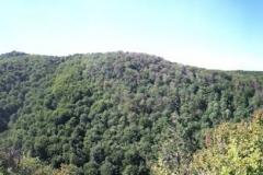 012-krndija-petrov-vrh-biciklisticka-ruta