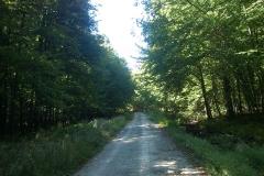 002-viroviticki-ribnjaci-biciklisticka-ruta
