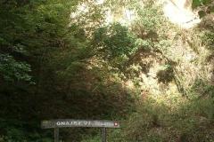 008-loncarski-vis-bedemgrad-biciklisticka-ruta