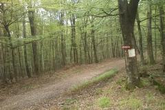 011-loncarski-vis-bedemgrad-biciklisticka-ruta