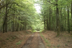 012-loncarski-vis-bedemgrad-biciklisticka-ruta