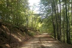 001-drenovac-trisnjica-jankovac-biciklisticka-ruta