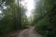002-drenovac-trisnjica-jankovac-biciklisticka-ruta