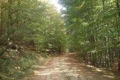 006-drenovac-trisnjica-jankovac-biciklisticka-ruta