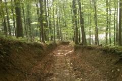 008-drenovac-trisnjica-jankovac-biciklisticka-ruta