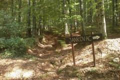 009-drenovac-trisnjica-jankovac-biciklisticka-ruta