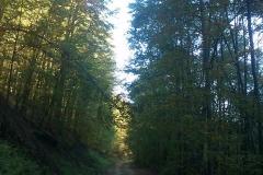 001-drenovac-uviraljka-greben-sokolina-biciklisticka-ruta