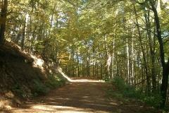 003-drenovac-uviraljka-greben-sokolina-biciklisticka-ruta