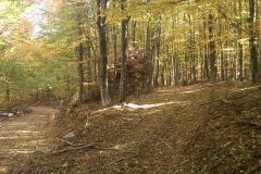 006-drenovac-uviraljka-greben-sokolina-biciklisticka-ruta