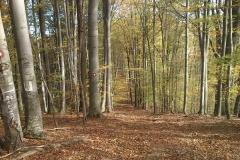 012-drenovac-uviraljka-greben-sokolina-biciklisticka-ruta