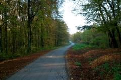 003-daruvar-petrov-vrh-biciklisticka-ruta