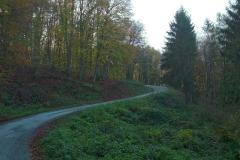 004-daruvar-petrov-vrh-biciklisticka-ruta