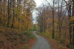 006-daruvar-petrov-vrh-biciklisticka-ruta
