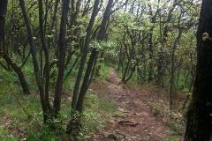 002-jezero-orfu-biciklisticka-ruta