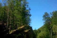 1-papuk-3-vrha-biciklisticka-ruta