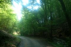 3-papuk-uviraljka-biciklisticka-ruta