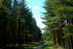 28-mreznica-biciklisticka-ruta
