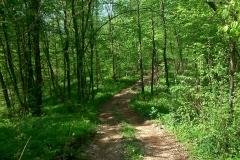 49-mreznica-biciklisticka-ruta