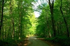 9-ozalj-vivodina-biciklisticka-ruta