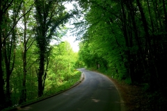 4-dvorci-zagorja-biciklisticka-ruta