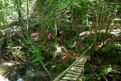 2015-06-21-Kanjon-Slapnice-021-biciklisticka-ruta