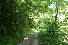 2015-06-21-Kanjon-Slapnice-040-biciklisticka-ruta