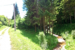 2015-06-21-Kanjon-Slapnice-045-biciklisticka-ruta