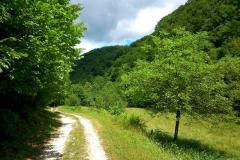 2015-06-21-Kanjon-Slapnice-049-biciklisticka-ruta