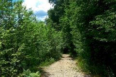 2015-06-21-Kanjon-Slapnice-061-biciklisticka-ruta