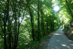 2-slani-dol-biciklisticka-ruta