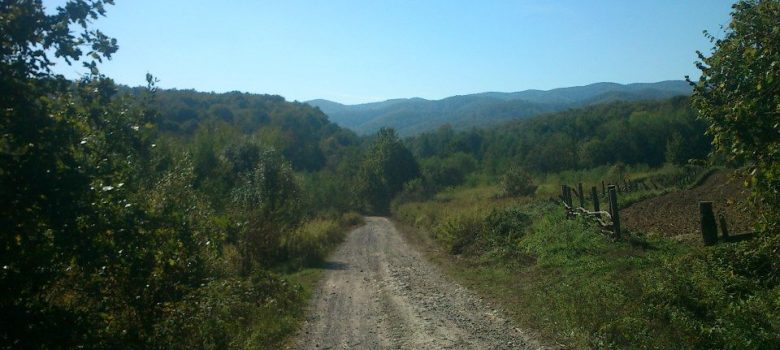 Jankovac - Češljakovački vis