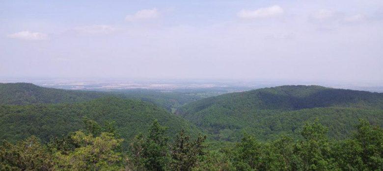 Biciklistička ruta: Motičina - Gazije V.5