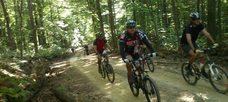 Biciklistička ruta: Virovitički ribnjaci